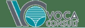 Geo Light Partner - Voca Consult